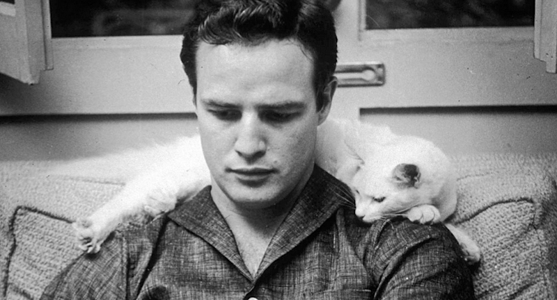 Listen to Me Marlon | SIFF Cinema