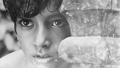 The Apu Trilogy: Song of the Little Road (Pather Panchali)